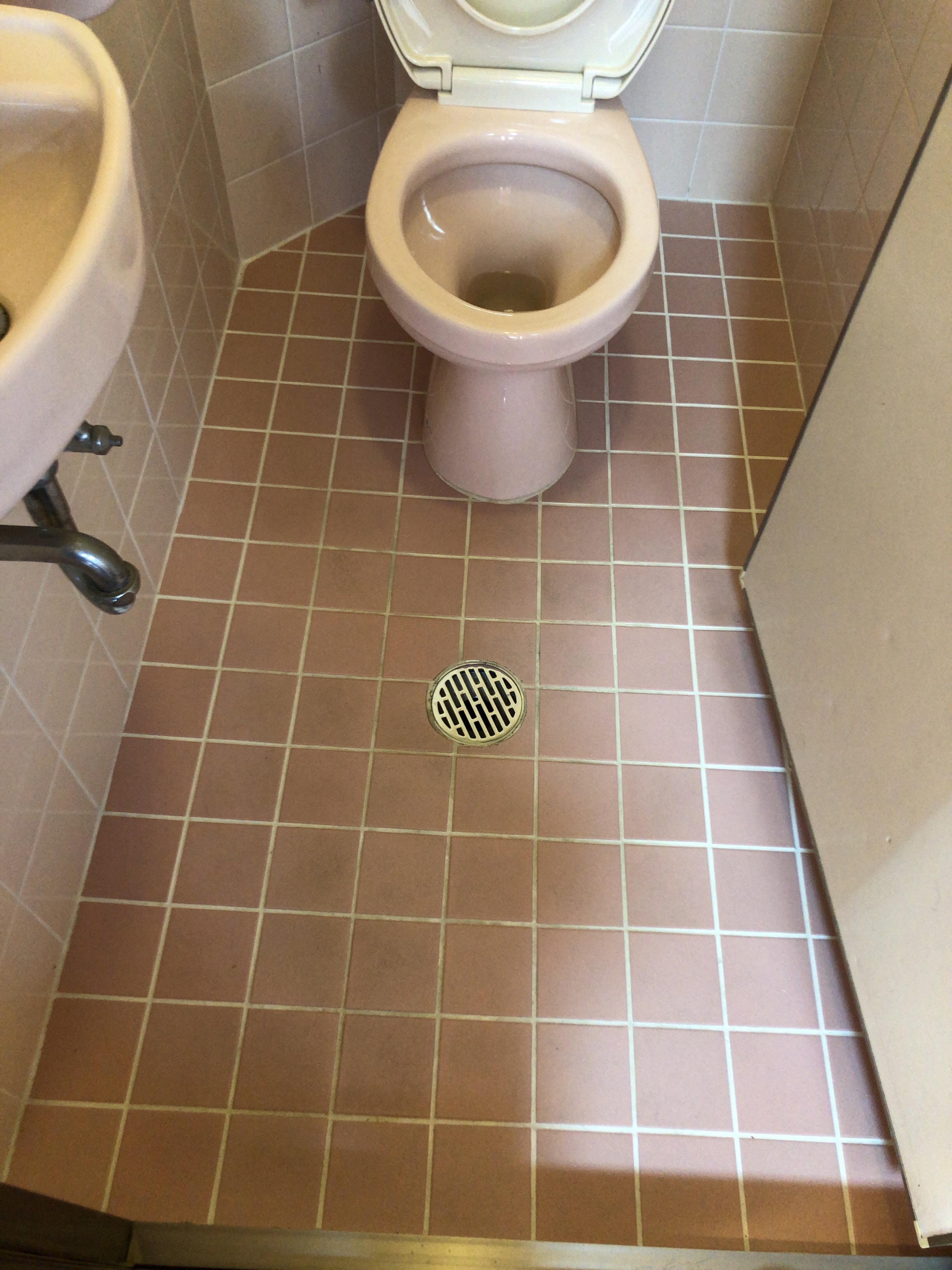 トイレ クリーニング ♩