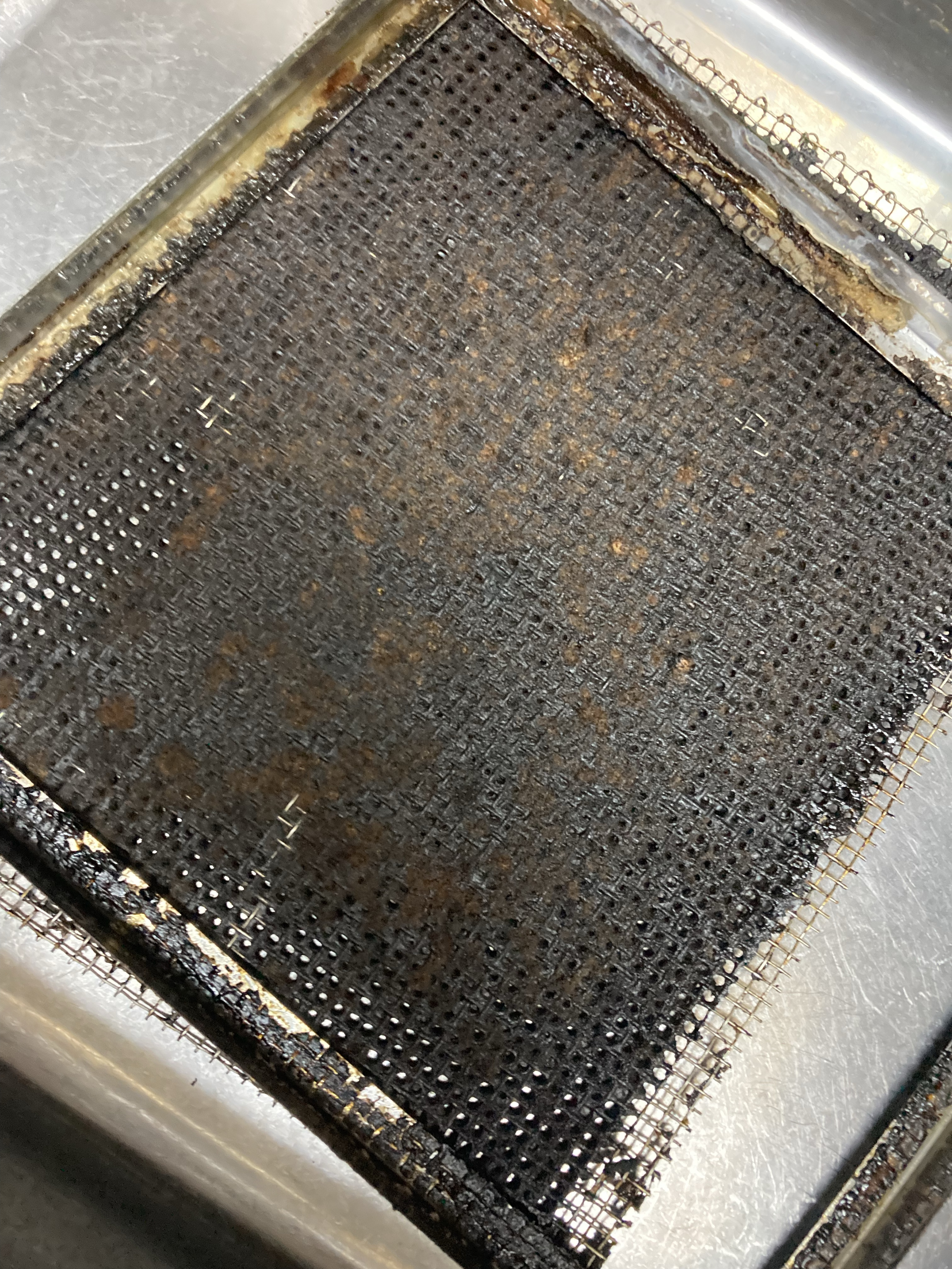 厨房 レンジフード 換気扇 ダクト 排気口 防鳥網 洗浄